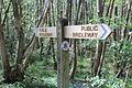 Finger post on Serpent Trail.JPG