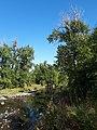 Fish Creek W Calgary August 2017.jpg