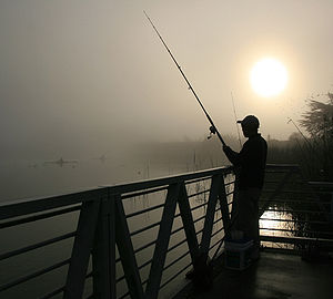 English: Fisherman at Lake Merced (California,...