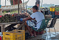 Fisherman boy peeling oyster.jpg