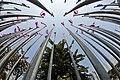 Flagpoles in the Queens garden (3314453992).jpg