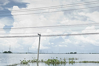 Lopburi - Flood in Lopburi, 2011
