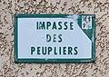 Footing de confinement 2020 - impasse des Peupliers (Beynost) - panneau de rue.jpg