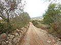 Footpath PR.1 Section 9, Paderne Castle Route, 13 October 2015 (4).JPG