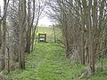 Footpath from the A144 - geograph.org.uk - 984671.jpg