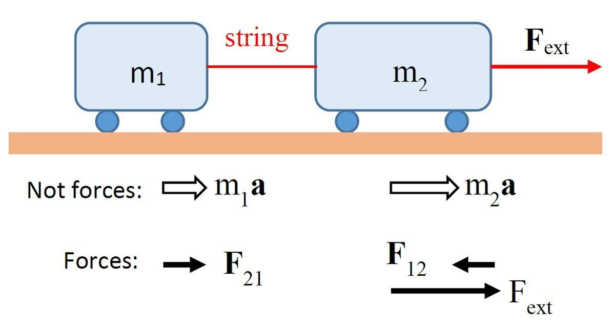 Dynamics Physics  U2014 Canyon Physics