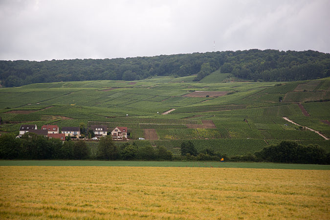 France Burgundy Region countryside.jpg