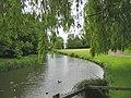 Fyfield Millpond - geograph.org.uk - 177983.jpg