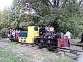 Gödöllő Narrow Gauge Railway 02.jpg
