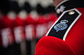 GUARDS UNIFORM - Army Photographic Competition 2013 MOD 45157255.jpg