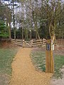 Gate into Norley Inclosure, Norley Wood car park, New Forest - geograph.org.uk - 407162.jpg