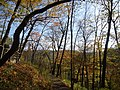Gfp-iowa-effigy-mounds-view-from-hiking-trail.jpg