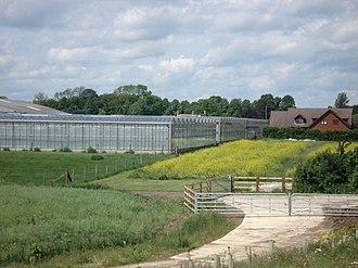 Chawston - Image: Glasshouses, Roxton Road, Chawston geograph.org.uk 449747