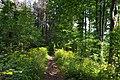 Gmina Kamienica, Poland - panoramio (4).jpg