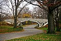 Gothic Bridge of Central Park December 2010.jpg
