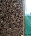 Gravel Wall.jpg