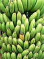 Green and yellow bananas.jpg