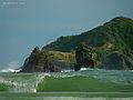 Green sea (5470187808).jpg