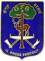 Groupe Forestier N°8 6e Régiment du Génie (Tronçais).jpg