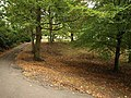 Grove Park - geograph.org.uk - 1026846.jpg