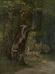 Gustave Courbet - Deer in the Forest - 14.76 - Minneapolis Institute of Arts.jpg