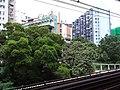 HK 觀塘站 Kwun Tong MTR Station August 2018 SSG 03.jpg