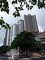HK 香港南區 Southern District PFL Pokfulam 薄扶林道 Pok Fu Lam Road September 2019 SSG 29.jpg