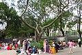 HK CWB Victoria Park June 2018 IX2 01.jpg