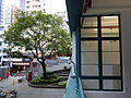 HK Central PMQ mall courtyard banyan tree kitchen window Jan-2015 DSC.JPG