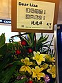 HK North Point 北角 新光戲院 SunBeam Theatre Liza Wang 汪明荃 flowers 阮兆輝 Franco Yuen Dec-2012.JPG