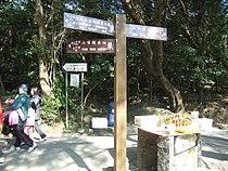 HK Peak Lugard Road n Harlech Road.JPG