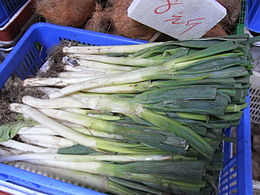 HK SYP Best of Best Vegetable Peking Welsh onion Allium Aug-2012.JPG