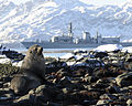 HMS Portland Sails Near Huge Glacier in South Georgia MOD 45151715.jpg