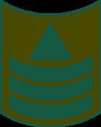 Haga-1950-1970-4.png