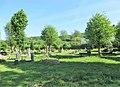 Hagen, Jüdischer Friedhof Gräber 1.jpg