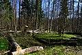Hajnówka, Poland - panoramio (142).jpg