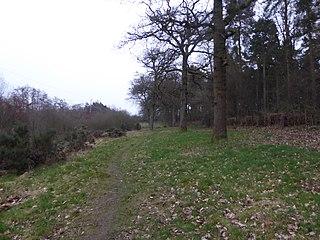 Harlestone Heath nature reserve in the United Kingdom