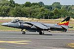 Harrier (5132377789).jpg