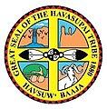 Havasupai Tribal Logo.jpg