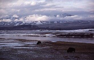 Hayden Valley - Image: Hayden Valley 1977JSchmidt Winter