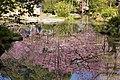 Heian Jingu Garden (3484418431).jpg