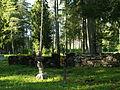 Hellamaa kalmistu.JPG