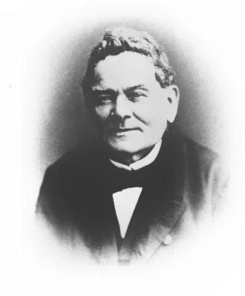Hermann Schlegel, Første taksonomi for grønn trepyton