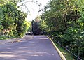 Hidden Falls - St Paul, MN - panoramio (26).jpg
