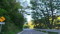 Hiekawa, Izu, Shizuoka Prefecture 410-2507, Japan - panoramio (101).jpg