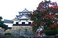 Hikone Castle 彦根城 (2114708267).jpg
