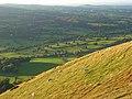 Hillside, Caer Caradoc - geograph.org.uk - 1006447.jpg