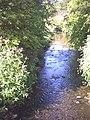 Hogsmill River, north from footbridge. - geograph.org.uk - 32676.jpg