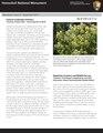 Honulili NM Newsletter-3.pdf