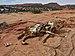 Horse carcass - Moccasin Mountain Dinosaur Tracksite.JPG